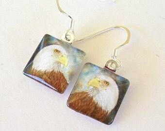 Bird Jewelry Earrings American Bald Eagle Square Art Glass School Team Mascot Bird Eagle