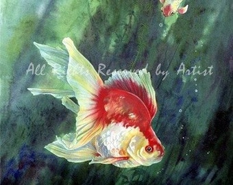 Koi Fantail Goldfish Art Fish Tropical Framed Giclee Print Painting Reproduction