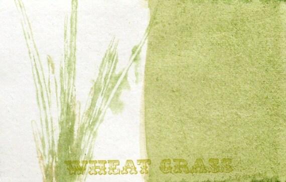 Wheat Grass Postcard
