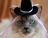 Cat Hat - Witch Hat with Wiglet - The Witch of Pink Lavender - Cat Halloween Costume - Pet Halloween Costume - Cat Photo Prop