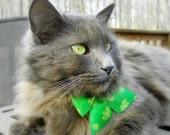 Pet Saint Patrick's Day Bow - The Luck of the Irish
