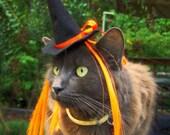 The Witch of Orange