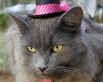 Cat Hat - Hot Pink- Valentine's Day - Cupid Cat Hat