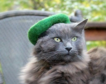 Cat Green Beret - Scottish Hat for cats - Girl Scouts of America  - Green Beret - St Patrick's Day