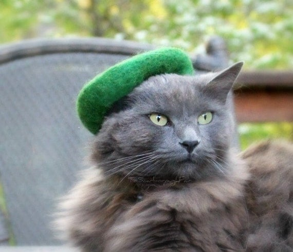 Cat Green Beret - Scottish Hat for cats - Green Beret - Cat Scouts of America