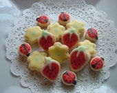 Ladybugs, Strawberries and Blooms Red Soft Cookies (4 dzn)