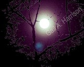 9m. Icy Moon - Abstract Art Photography - Image 10.5 x 8