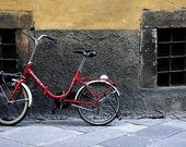 The Little Red Bike - 8x12 Photograph
