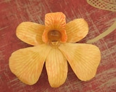 Real Orchid Necklace - Autumn color on 18 inch brown cord