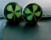 REAL 4 Leaf Clover Post Earrings - round posts with Black background - Lucky little Irish treasures, gift, plug, shamrock, green, organic,
