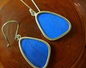 Real Butterfly Wing Earrings - Medium Wing shaped Blue Morpho