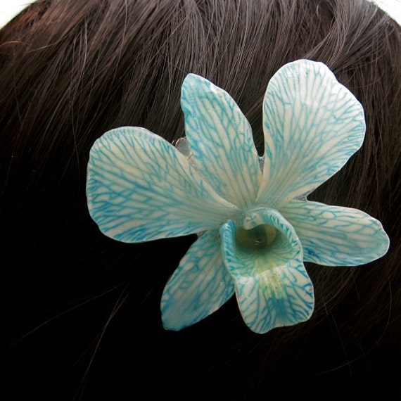 Real Orchid hair piece - Stemmed Dyed Blue Dendrobium on Alligator clip