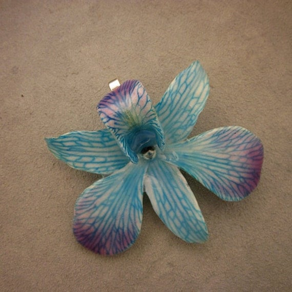 Real Dendrobium Orchid Pendant- Blue with Purple edges on Sterling silver plated bail