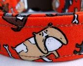 English Bulldog dog collar--Medium