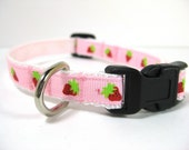 Strawberry Shortcake Small Dog Collar