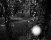 The Fairy (Navi) - ACEO