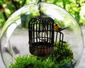 Fly Free Caged Bird - Hanging Globe Terrarium
