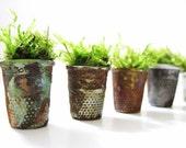 Thimbelina's Miniature Garden - Set Of Four Vintage Sewing Thimble Planters