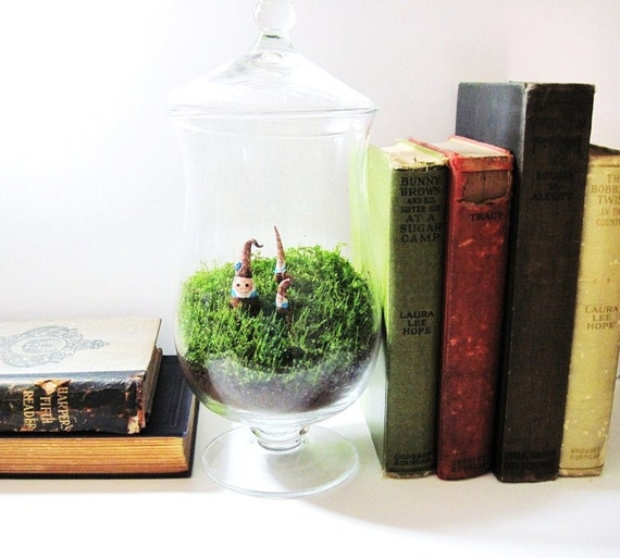 SALE The Forest Folk of Fernlily Wood Large Terrarium