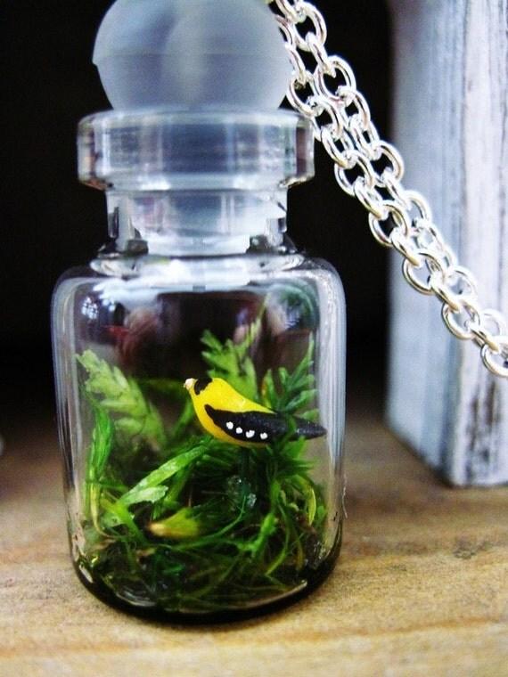 CUSTOM ORDER FOR Jessica -  Woodland Terrarium Necklace: Mini Bird Diorama Featuring The American Goldfinch