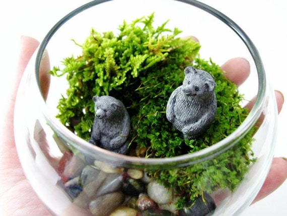 Bear Pair Bowl Terrarium & Live Moss: Miniature Black Bear Figurines in Small Glass Bowl