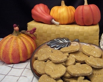 Sadie's Pumpkin Patch Treats
