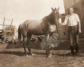Farmer And Horse By Hay Wagon Vintage Photo Ontario Estate