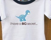big brother to be shirt i have a secret dinosaur design pregnancy announcement t shirt