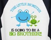 Big Brother shirt-little monster big brother raglan T-shirt