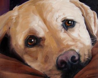 BigLove Moose, custom Pet Portrait in Oils by puci, 8x8 inches