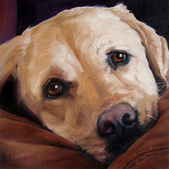 biglove moose custom pet portrait paintings in oils by puci