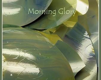 Morning Glory  Glass Shards - coe 104  - .2  oz