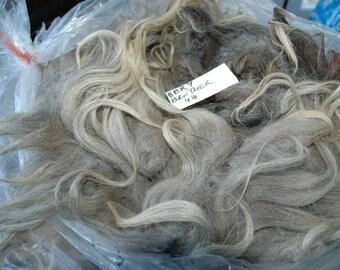 Grey, silver grey, some tan, raw wool, Navajo Churro