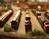 Miniature Toy Trains in a Line Photograph 8x10 Metallic Paper