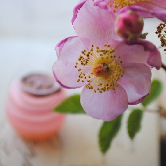 Rosa Solid Natural Perfume Sample 2012 edition - Inspired by the Wild Rose of California, this is a rich, earthy woody rose fragrance
