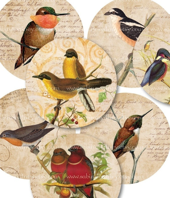 18 mm Circles - 3\/4 Inch - Bird Collages - Digital Collage Sheet 808