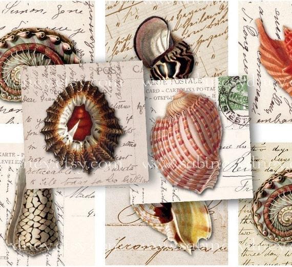 1 inch Squares - Shells on Handwriting, Ephemera - Digital Collage Sheet 254 - Buy THREE Get One FREE