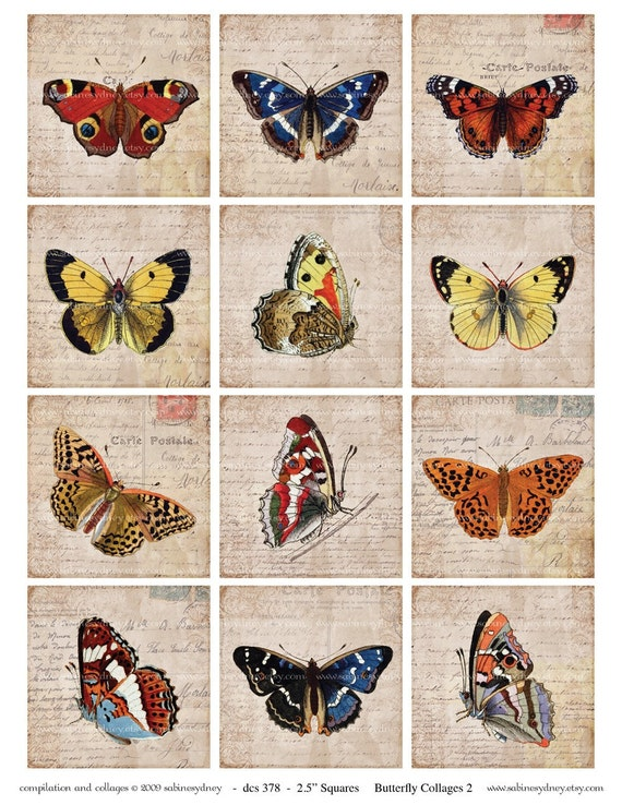 NEW - 2.5 Inch Squares - Butterfly Collages 2 - Digital Collage Sheet 378 - Buy THREE Get One FREE