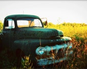 Rustic Ford Truck in Field (color) - 16x24 Art Photography Print