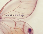 We're all a little fragile 24x36