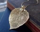 Gold Leaf Necklace, Large Gold Aspen leaf necklace, real LEAF JEWELRY, Aspen leaf necklace