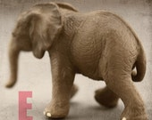 "Nursery Art, Elephant, Ready to Hang Photo Block ,8"""