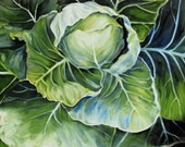 "Green Cabbage in Oil - 22""x28"" Print 2/100"