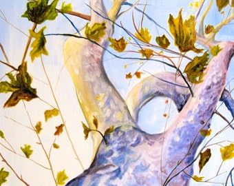 Sycamore Tree - Original Oil Painting