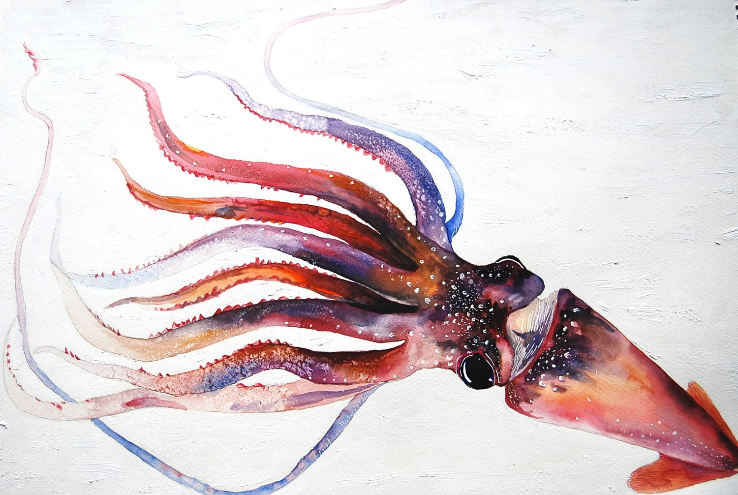 A Squid Original Oil and Watercolor Painting