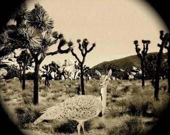 Joshua Tree - Animal Art Wood Block Print - Quirky Creature in Joshua Tree California