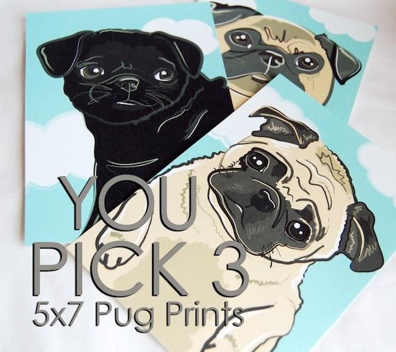 Pug Prints - You Pick 3 - 5x7 Size