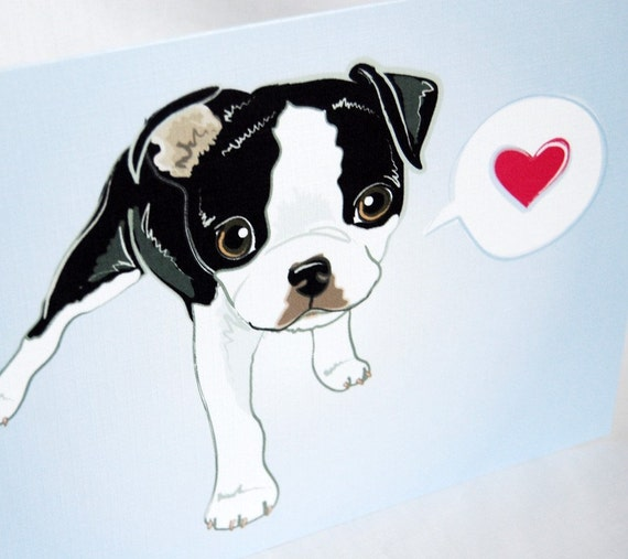 Lovey Boston Terrier Greeting Card