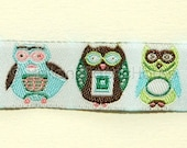 What a Hoot cute owls - ribbon/sewing tape
