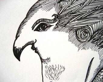 Harpy, original art